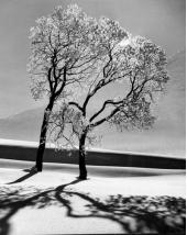 TimeInc: St. Moritz, Switzerland, February 1947